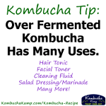Advertisement: Kombucha Tip: Over-fermented kombucha has many uses: hair tonic, facial toner, cleaning fluid, salad dressing, marinade, and many more!