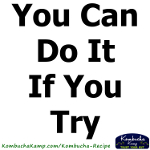 Advertisement: You can do it if you try!