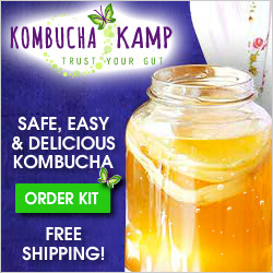 Advertisement: Kombucha Kamp: Trust Your Gut. Safe, Easy & Delicious Kombucha. Order a Kit — Free Shipping!