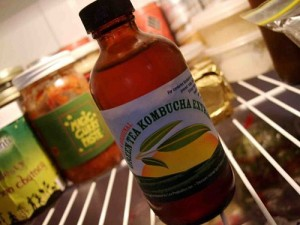 A bottle of Lev's Green Tea Kombucha Extract sits on a refrigerator shelf