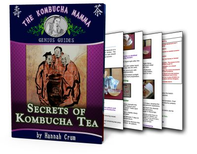 Don't miss out on this Kombucha Recipe and DIY Guide which includes an easy to follow Kombucha Tea Recipe explaining how to make kombucha tea and kombucha brewing tricks. If you want to know how to brew kombucha, these kombucha recipes will have you making kombucha tea (homemade kombucha tastes best) in no time.