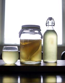 A bottle and glass of Kombucha set on either side of a currently brewing jar of Kombucha with a SCOBY inside.