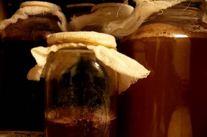 Kombucha Brewing Jars