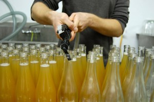 Longjevitea's commercial bottling operation
