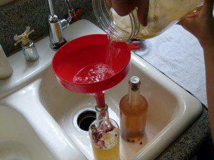 Pour Kombucha Through a Funnel to Bottle