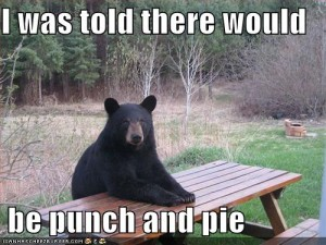 i was told there would be punch and pie bear