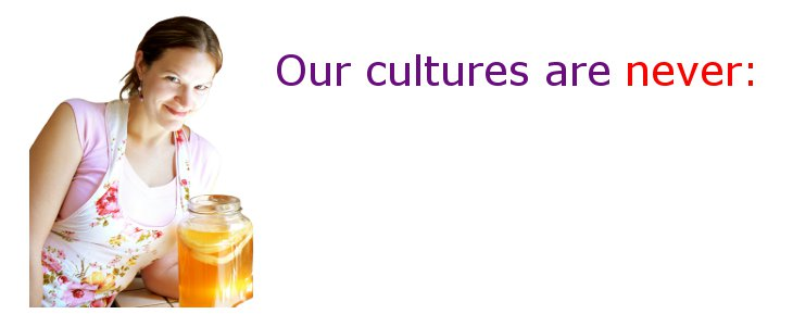 Kombucha Kamp Mushroom Cultures are never: