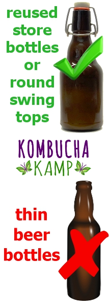 Don't make the Kombucha Brewing Mistakes many newbies do by putting fermented drinks in Beer Bottles