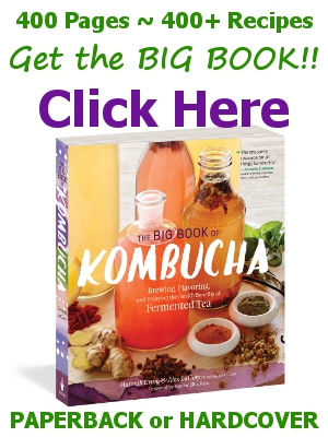 "Get The Big Book of Kombucha from KKamp, ""The one-stop guide for all things Kombucha!"""