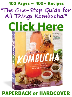 "Buy The Big Book of Kombucha from KKamp, ""The one-stop guide for all things Kombucha!"""