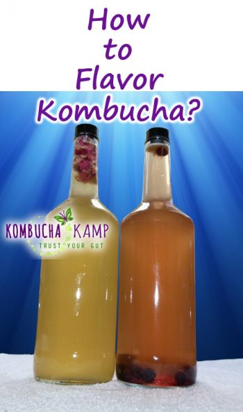 How to Flavor Kombucha Tea Tips and Video from KKamp