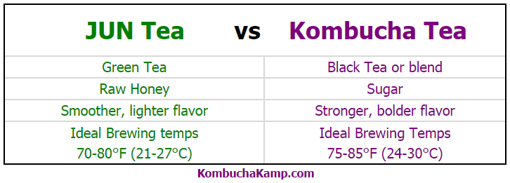 JUN Tea vs Kombucha Tea comparing and contrasting