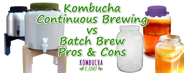 Kombucha Continuous Brew vs Batch Brew Explained by Kombucha Kamp