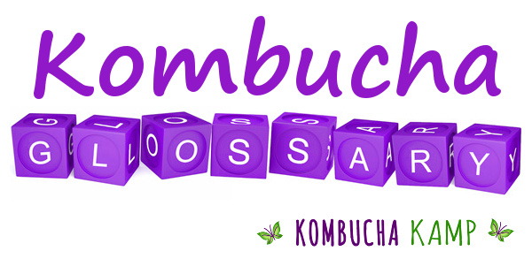 Kombucha Glossary Definitions of Terms