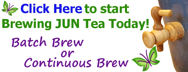JUN Tea Batch and Continuous Brew Kits from KKamp