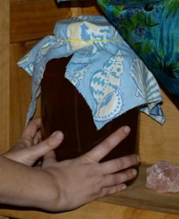 Cloth Cover is best for most culture ferments such as Kombucha
