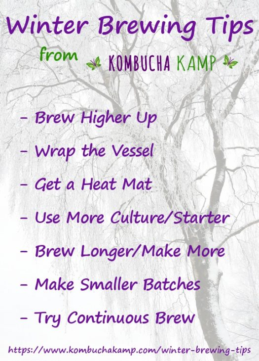 Top 7 Winter Brewing Tips from Kombucha Kamp
