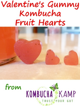 Heart Shaped Gummy Candies with Kombucha and Fruit