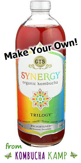 Copycat GT Kombucha with these tips