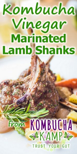 Kombucha Vinegar Marinade on Lamb Shanks Recipe