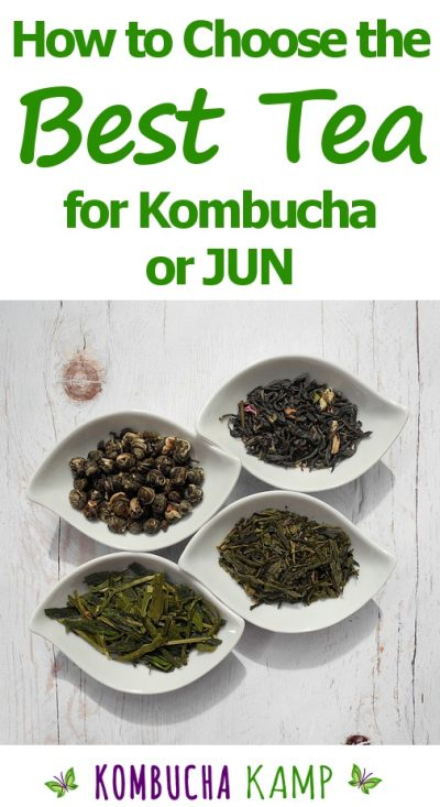 the best Tea Blend for Kombucha