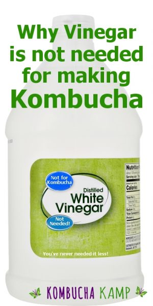 Why Vinegar is not needed for making Kombucha